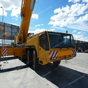 Used DEMAG AC 300 Terrain Crane for Sale
